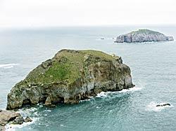 Isla de la Erbosa, Cabo Peñas.