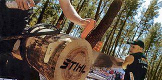 José Riesgo. Corta de troncos en altura.
