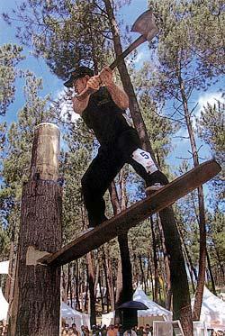 José Riesgo. Corta de troncos en altura