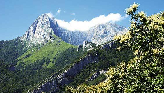 Vista del Macizo del Tiatordos. Foto: Juanjo Arrojo