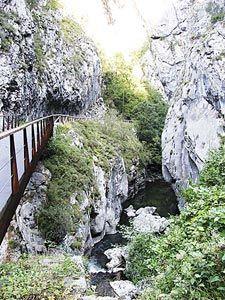 Senda del Oso. Teverga. Asturias