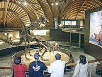 Interior del Museo del Jurásico de Asturias en Colunga