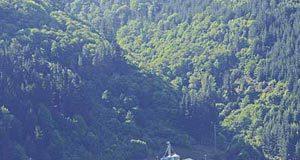 Polígono de Obanca en Cangas del Narcea