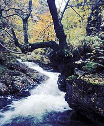 Ruta del Alba, Sobrescobio.