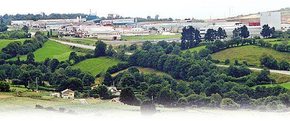 Vista general del Polígono Industrial La Curiscada (Tineo)