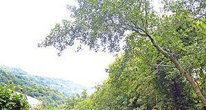 Río Negro en el valle de Nembra