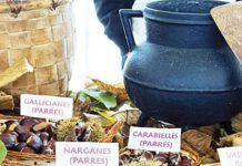 Certamen de la Castaña y Productos de la Huerta