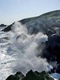 Cada vez soplan menos vientos del nordeste que enfrían el agua, así que durante el verano el agua del mar es cada vez más cálida.
