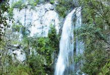 Cascada en Puente Vidosa (Ponga)