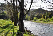Río Nalón en Palomar, Ribera de Arriba