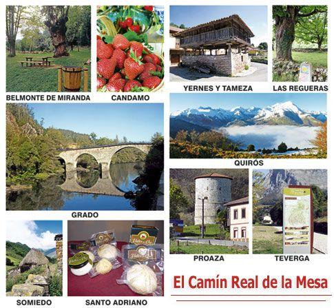 Comarca Camín Real de la Mesa: Belmonte de Miranda, Candamo, Grado, Somiedo, Quirós, Yernes y Tameza, Las Regueras, Proaza y Teverga