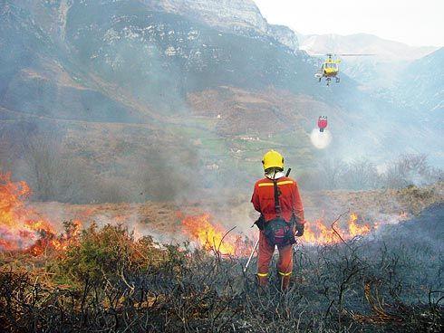Bomberos extinguiendo un incendio forestal