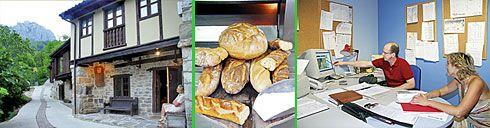 Fuente L'Aceu en Caleao (Caso), Panadería La Restinga en Rioseco (Sobrescobio),  Ingeniería Agrotecnia en Pola de Laviana