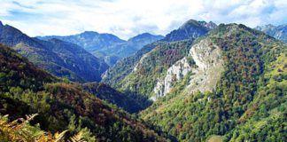 Parque Natural de Redes.