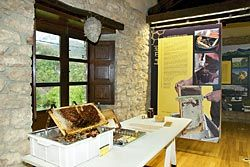 Museo de la Apicultura. Caso