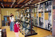 Museo de la Madera. Caso