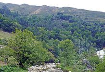Río Espinaredo, uno de los atractivos del concejo de Piloña.