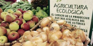 Alimentos ecológicos de Asturias
