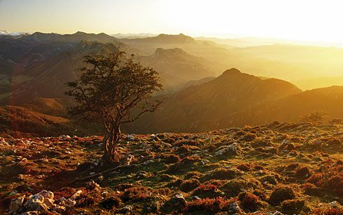 Panorámica desde el pico La Xamoca. (Sobrescobio)