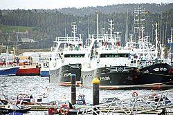 Flota pesquera del puerto de Celeiro