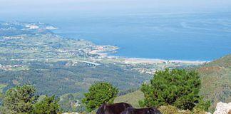 Asturcones. Al fondo, rasa costera de Caravia-Colunga.
