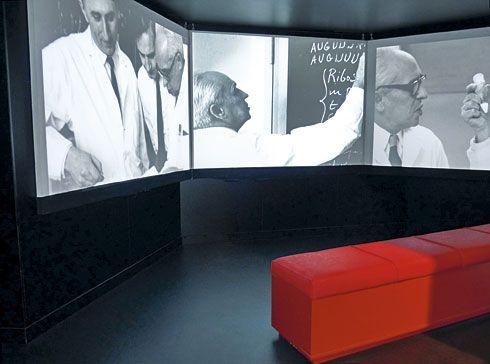 Interior de la Exposición Permanente Severo Ochoa