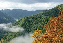 Reserva Natural de Muniellos (Cangas del Narcea)