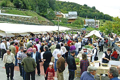Pasada edición de la Festa del Viño, en el Parque Público de Pesoz.