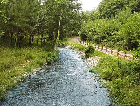 Parte de la ruta de senderismo, que discurre junto al río Mazo