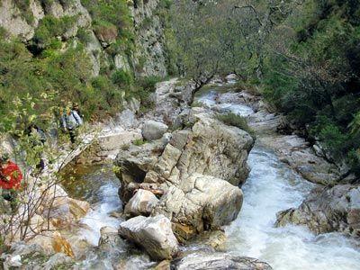 Ruta del Alba. Parque Natural de Redes.