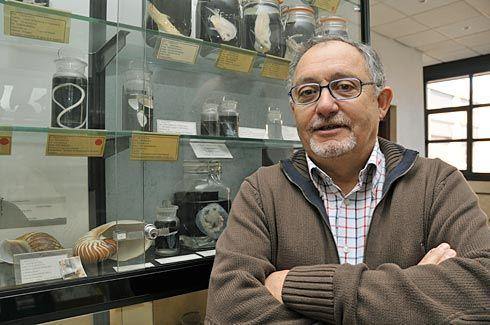 Ricardo Anadon