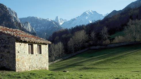 Vista del Picu Urriellu, Cabrales