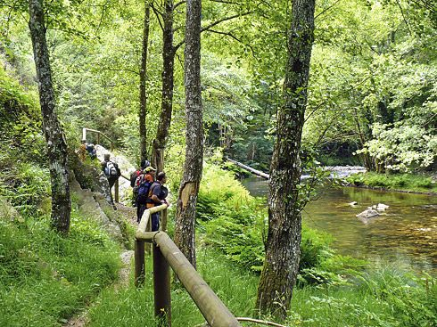 Ruta de Las Hoces del río Esva (Tineo)