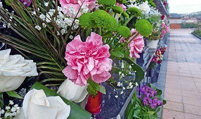 Flores en nichos de cementerio.