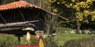 Ruta Clariniana, Carreño.