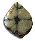 boal-quiastolita