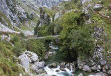 Puente La Jaya y río Cares (Cabrales)
