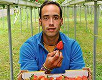 Jairo Alvarez. Se dedica la cultivo de fresas en Villamer, Riosa.