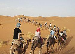 Proyecto de cooperación 'Vínculos', en el Sahara