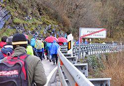 Manifestación del 22M a su paso por el Puente de los Fierros