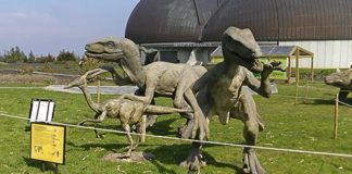 Museo del Jurásico. Colunga