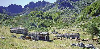 Braña El Gumial en el Alto Aller, ubicada en las proximidades del bosque de hayas que da nombre a la Ruta del Gumial (PR-AS 48)