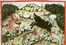 Mitos sobre el Xabaril