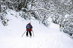 Esquiadores en el Aramo