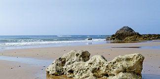 Playa de Vega. Ribadesella