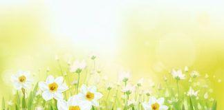 Primavera, algo está cambiando