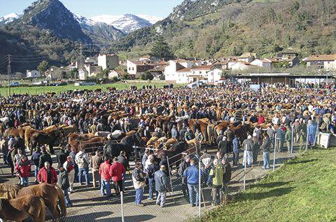 Feria ganadera de San Blas en Proaza