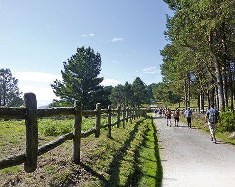 Área recreativa de Pena Queimada en la sierra de Penouta