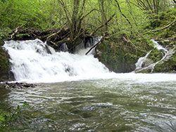 Cascada en Riosa