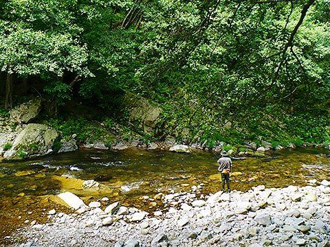 Pescador en el río Esva (Tineo)